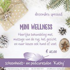 MiniWellness-kerst-fb